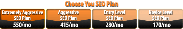 Choose your SEO Plan
